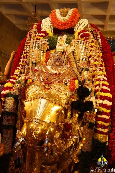 Sri-padmavathi-Amma-Vari-Gaja-Vahanam5
